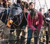 Accompagnement dans les vignes | Ornellaia | Bolgheri | Toscana