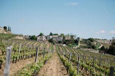 Accompagnement | Château Ausone | Saint Émilion | Bordeaux