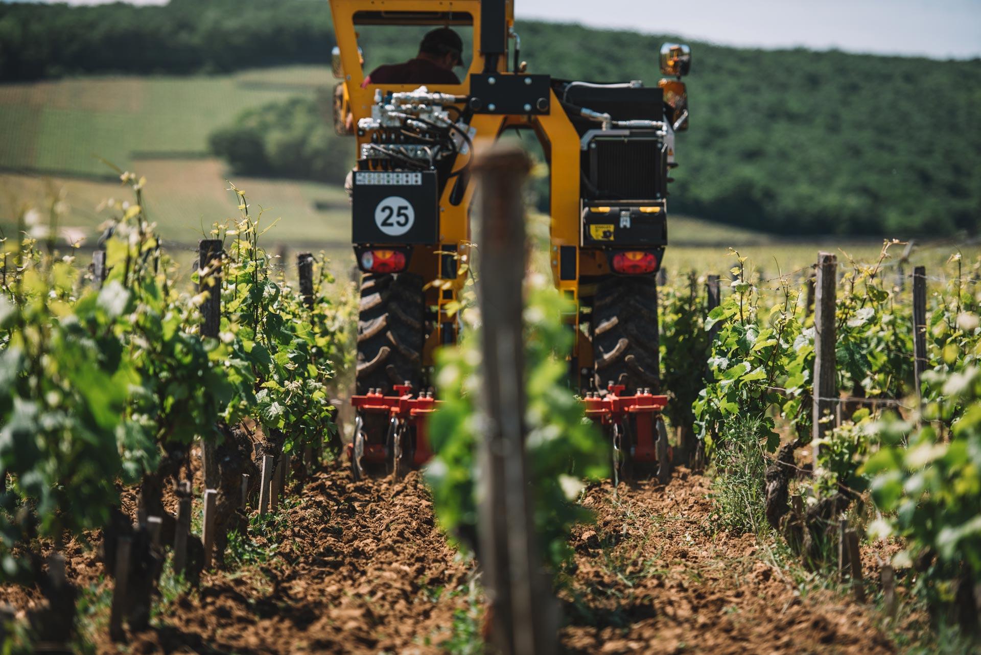 Lavorazione suolo   Domaine Leroy   Clos de Vougeot   Bourgogne