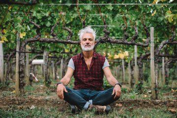 Cordon. Guide pratique de taille de la vigne