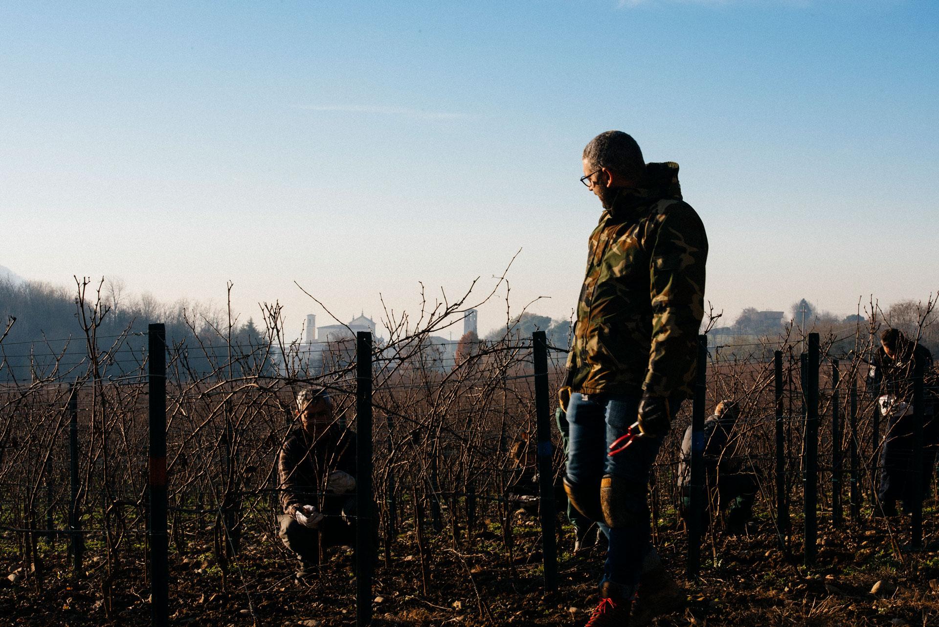 On field tutoring | Ca del Bosco | Franciacorta | Italy