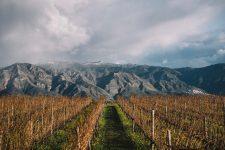 Etna | Planeta | Passopisciaro | Sicilia
