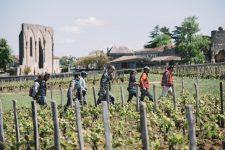Accompagnement | Clos Fourtet | Saint Émilion | Bordeaux