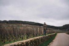 Domaine Leroy | Romanée Saint Vivant | Bourgogne
