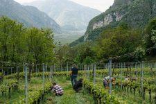 Epamprage, Ferrari, Trentino Italia