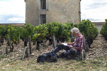 Château Latour, Premier Grand Cru Classé de Bordeaux