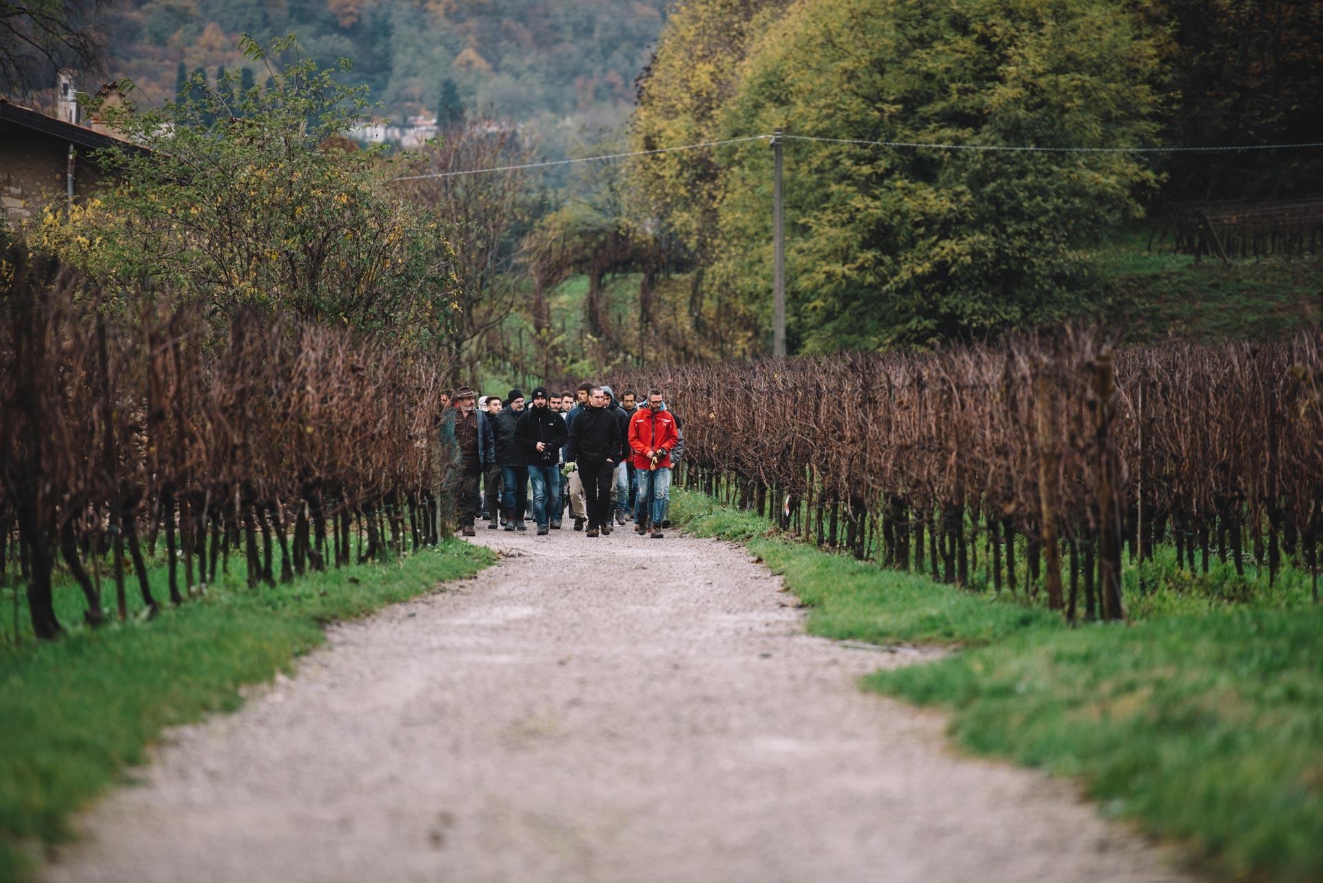 école 2016/17 | Bellavista | Franciacorta | Lombardia