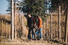 Team simonitesirch | Schiopetto | Collio | Friuli Venezia Giulia